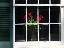Fenêtre des roses Photos stock