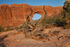 Fenêtre du nord en parc national de voûtes Photographie stock