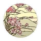 Fenêtre en verre teinté avec Sakura Photographie stock libre de droits