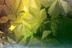 Fenêtre souillée Image libre de droits