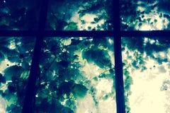 Fenêtre enchantée Images stock