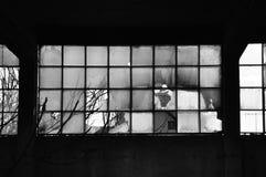 Fenêtres cassées et mur en béton Photo stock