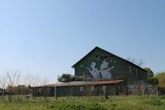 Fenêtres de notes de musique de porc et de vache de danse Photos libres de droits