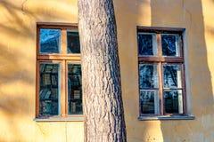 Fenêtres et livres de bibliothèque à l'intérieur photographie stock libre de droits