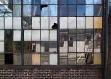 Fenêtres industrielles cassées Photo stock