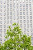 Fenêtres multiples sur un grand immeuble de bureaux Londres Angleterre Europ Image stock