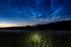 Fenômeno atmosférico de nuvens de brilho da noite noctilucent das nuvens imagens de stock royalty free
