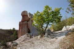 Fenômeno da natureza o casamento hirto de medo, Bulgária Fotos de Stock Royalty Free