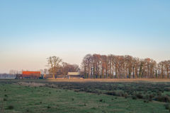 Fen with winter trees and farm. Nature reserve Needse Achterveld Stock Photography