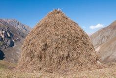 Fenaison dans les montagnes Image stock