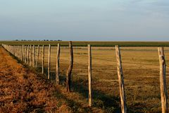 Fence. Pasture fence dividing pasture land, wheat stubble, and corn stock image