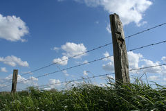 Fence. A fence and grass against a cloudy sky Stock Photos