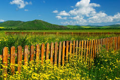 Fence. Wooden fence with flowers under blue sky Stock Photos