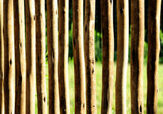 Fence. Wooden fence on a farm made of rough cut branches Royalty Free Stock Photos