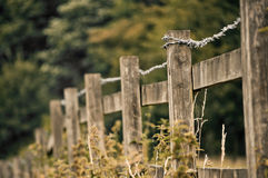Fence Royalty Free Stock Photos
