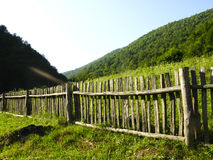 Fence. Old classic nice wooden fence in the summer meadow Royalty Free Stock Photo