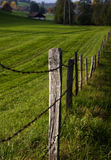 Fence. Small fence, the freedom border for some cows and goats. Location: Switzerland Stock Photography