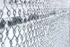 Fence. A chain-link fence just after snow and frost Stock Image