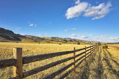 Fence. Stock Images