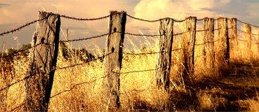 Fence. Barbed wire Fenceline on farm royalty free stock photography