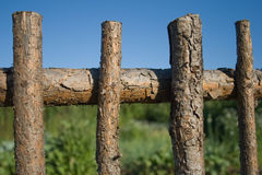 Fence. Against the sky and grass Stock Image