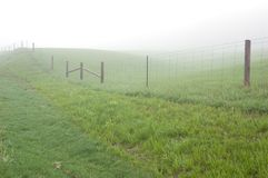Fence. Posts disappearing into the mist Stock Photography