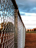 Fence. D field royalty free stock images