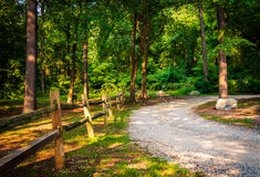 Fence along a dirt road through a forest in York, Pennsylvania. Stock Photo