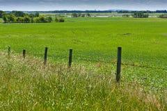 Fence Along Field Stock Photos