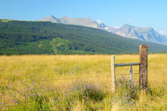 Fence along field of grasses in Glacial mountains. Stock Photos
