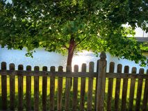 Fence along a pond. Tree Fence and Pond Stock Photos