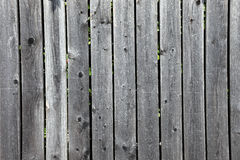 Fence as textured background. Stock Photo