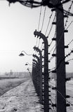 Fence at Auschwitz Royalty Free Stock Images