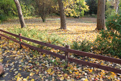 Fence in the autumn park Royalty Free Stock Photo