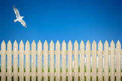 Fence background Stock Photo