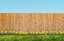 Fence at backyard Royalty Free Stock Photos
