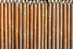 Fence from a bamboo Royalty Free Stock Images