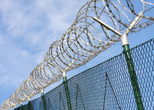 Fence with a barbed wire. Royalty Free Stock Photo