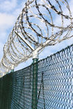 Fence with a barbed wire. Royalty Free Stock Image