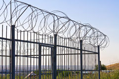 Fence of barbed wire Stock Photo