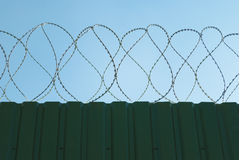Fence with barbed wire. Green fence with barbed wire Stock Photo
