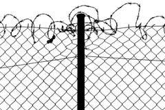 Fence with barbed wire. Wired fence with barbed wires Royalty Free Stock Photos