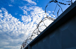 Fence with a barbed wire.  Stock Photo