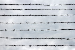 Fence with barbed wire Royalty Free Stock Images