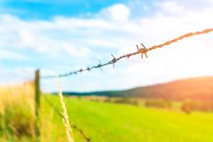 Fence with barbed wire. On the farm Royalty Free Stock Photos