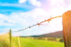 Fence with barbed wire. On the farm Stock Images