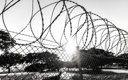 Fence with a barbed wire. Under a blue sky Royalty Free Stock Photography