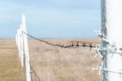 Fence with barbed wire in the field Stock Photography