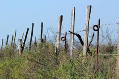 Fence and barbed wire in nature Stock Images