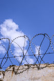 Fence with barbed wire. On the sky background Stock Photos